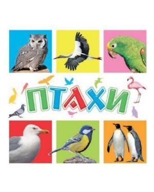 Птахи. Книги для найменших 70629