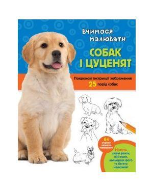 Вчимося малювати собак і цуценят. Покрокові інструкції зображення. 25 порід собак